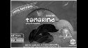 logo de Beneficiadora de Tamarindos