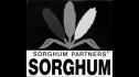 logo de Sorghum Partners