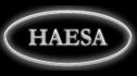 logo de Haesa Comercial