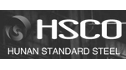 logo de Hunan Standard Steel Co.