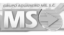 logo de Grupo Aduanero MS